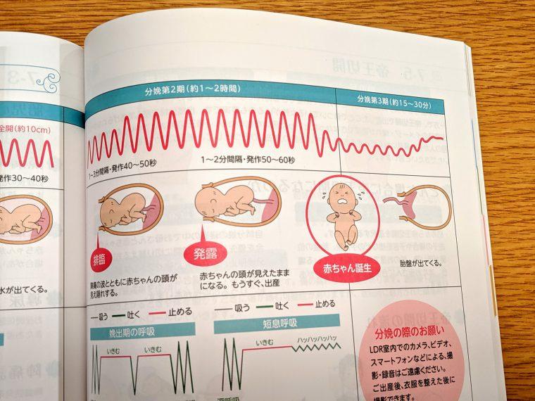 NTT東日本関東病院マタニティブック